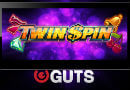Twin_SPin_Mobile_Guts 130x90